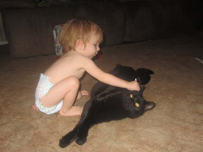 This is Becky's son Jensen, cleaning out the cat's ears with a Q tip.